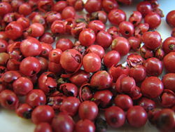 250px-Pink_Peppercorns_(Schinus_terebinthifolius)
